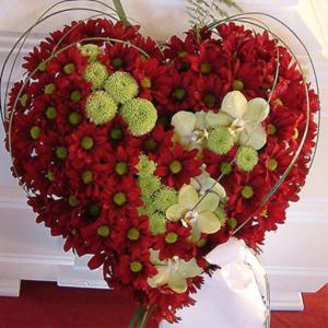 Hjerte 2105